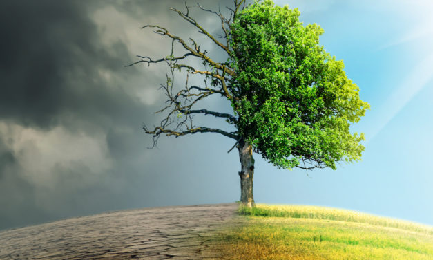 How Climate Change Will Impact Your Client's Retirement