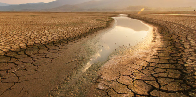 Solving for Droughts and Wildfires